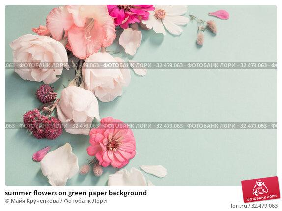 Купить «summer flowers on green paper background», фото № 32479063, снято 17 августа 2019 г. (c) Майя Крученкова / Фотобанк Лори