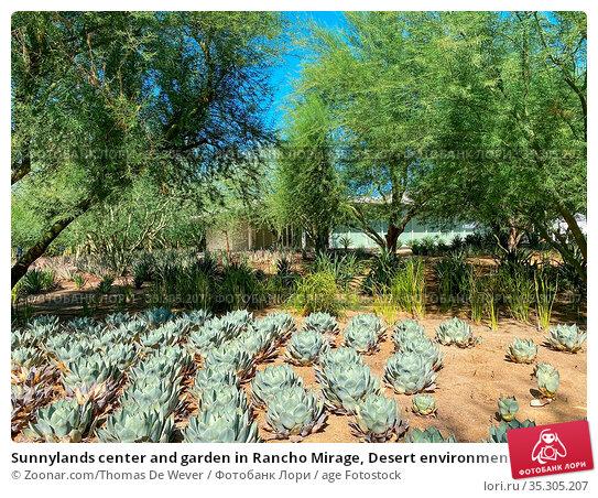 Sunnylands center and garden in Rancho Mirage, Desert environment... Стоковое фото, фотограф Zoonar.com/Thomas De Wever / age Fotostock / Фотобанк Лори
