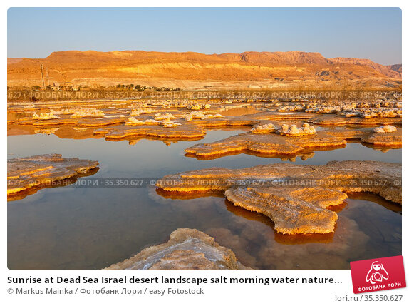 Sunrise at Dead Sea Israel desert landscape salt morning water nature... Стоковое фото, фотограф Markus Mainka / easy Fotostock / Фотобанк Лори