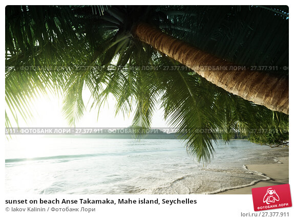 Купить «sunset on beach Anse Takamaka, Mahe island, Seychelles», фото № 27377911, снято 10 февраля 2016 г. (c) Iakov Kalinin / Фотобанк Лори