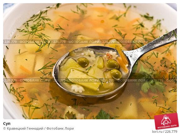 Купить «Суп», фото № 226779, снято 18 сентября 2005 г. (c) Кравецкий Геннадий / Фотобанк Лори
