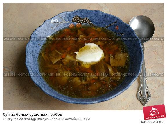 Суп из белых сушёных грибов, фото № 251855, снято 15 апреля 2008 г. (c) Окунев Александр Владимирович / Фотобанк Лори