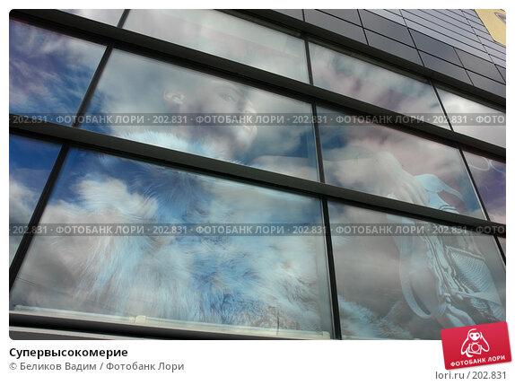 Супервысокомерие, фото № 202831, снято 10 августа 2007 г. (c) Беликов Вадим / Фотобанк Лори