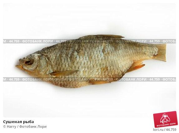 Сушеная рыба, фото № 44759, снято 1 июня 2005 г. (c) Harry / Фотобанк Лори