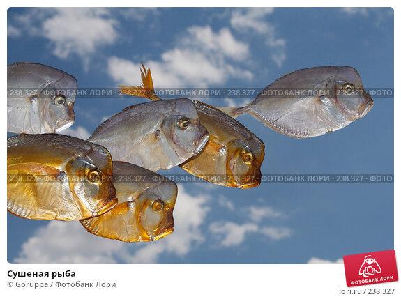Сушеная рыба, фото № 238327, снято 13 мая 2007 г. (c) Goruppa / Фотобанк Лори