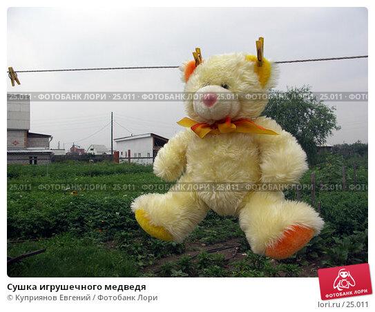 Сушка игрушечного медведя, фото № 25011, снято 22 июля 2006 г. (c) Куприянов Евгений / Фотобанк Лори