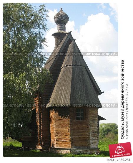 Суздаль, музей деревянного зодчества, фото № 159231, снято 19 августа 2006 г. (c) ИВА Афонская / Фотобанк Лори