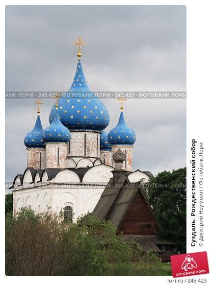 Суздаль. Рождественский собор, эксклюзивное фото № 245423, снято 1 июля 2006 г. (c) Дмитрий Нейман / Фотобанк Лори