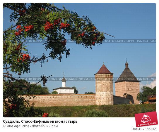 Суздаль, Спасо-Евфимьев монастырь, фото № 156163, снято 18 августа 2006 г. (c) ИВА Афонская / Фотобанк Лори