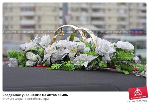 Свадебное украшение на автомобиль, фото № 205799, снято 29 декабря 2007 г. (c) Ольга Шаран / Фотобанк Лори