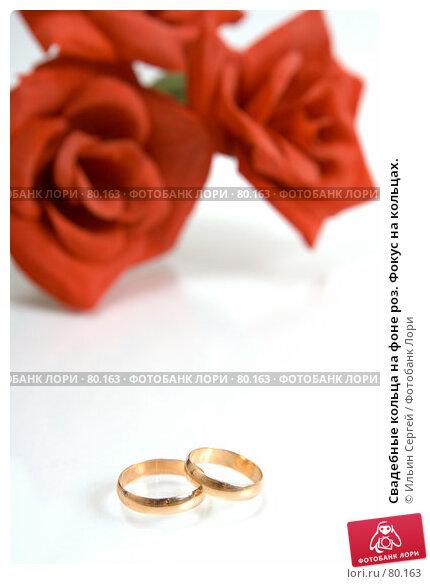 Свадебные кольца на фоне роз. Фокус на кольцах., фото № 80163, снято 15 апреля 2007 г. (c) Ильин Сергей / Фотобанк Лори