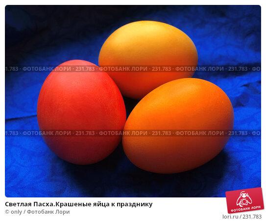 Купить «Светлая Пасха.Крашеные яйца к празднику», фото № 231783, снято 25 января 2007 г. (c) only / Фотобанк Лори