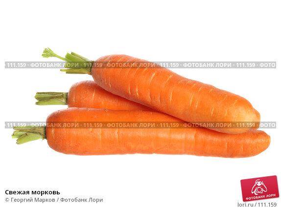Свежая морковь, фото № 111159, снято 16 октября 2007 г. (c) Георгий Марков / Фотобанк Лори