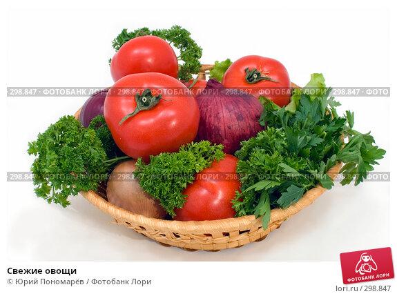 Свежие овощи, фото № 298847, снято 6 мая 2008 г. (c) Юрий Пономарёв / Фотобанк Лори