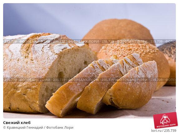 Свежий хлеб, фото № 235739, снято 25 апреля 2017 г. (c) Кравецкий Геннадий / Фотобанк Лори