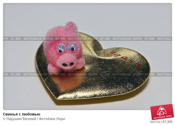 Купить «Свинья с любовью», фото № 67395, снято 23 марта 2018 г. (c) Парушин Евгений / Фотобанк Лори