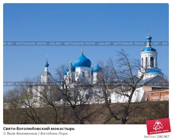 Свято-Боголюбовский монастырь, фото № 246967, снято 29 марта 2008 г. (c) Яков Филимонов / Фотобанк Лори