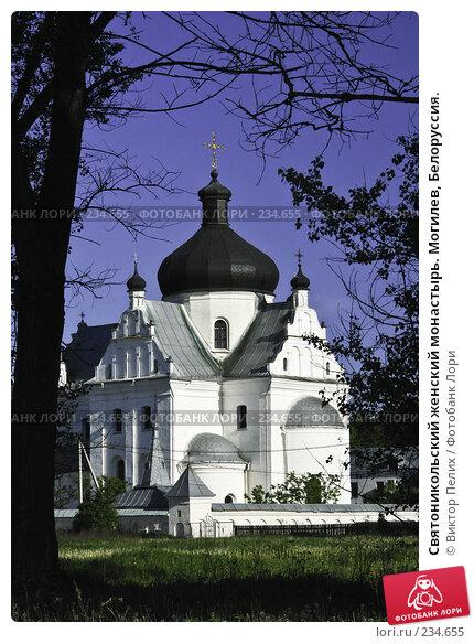 Святоникольский женский монастырь. Могилев, Белоруссия., фото № 234655, снято 23 января 2017 г. (c) Виктор Пелих / Фотобанк Лори