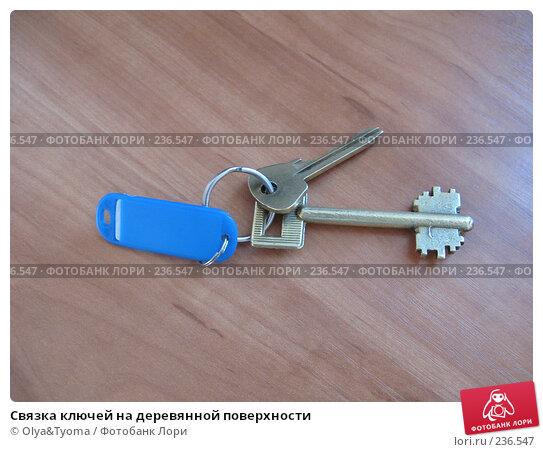 Купить «Связка ключей на деревянной поверхности», фото № 236547, снято 29 марта 2008 г. (c) Olya&Tyoma / Фотобанк Лори
