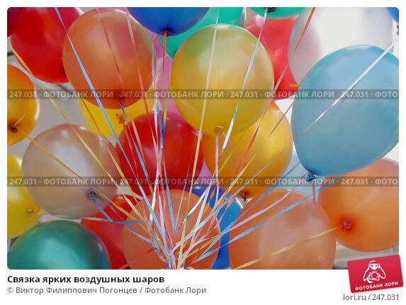 Связка ярких воздушных шаров, фото № 247031, снято 26 апреля 2007 г. (c) Виктор Филиппович Погонцев / Фотобанк Лори