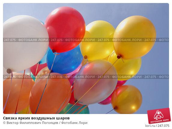 Связка ярких воздушных шаров, фото № 247075, снято 26 апреля 2007 г. (c) Виктор Филиппович Погонцев / Фотобанк Лори