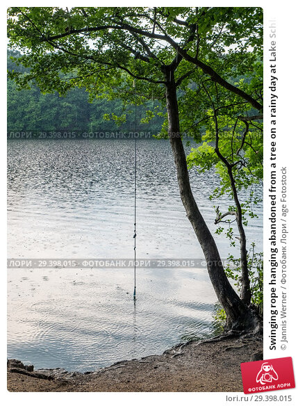 Купить «Swinging rope hanging abandoned from a tree on a rainy day at Lake Schlachtensee in Berlin-Zehlendorf, Germany.», фото № 29398015, снято 27 мая 2018 г. (c) age Fotostock / Фотобанк Лори