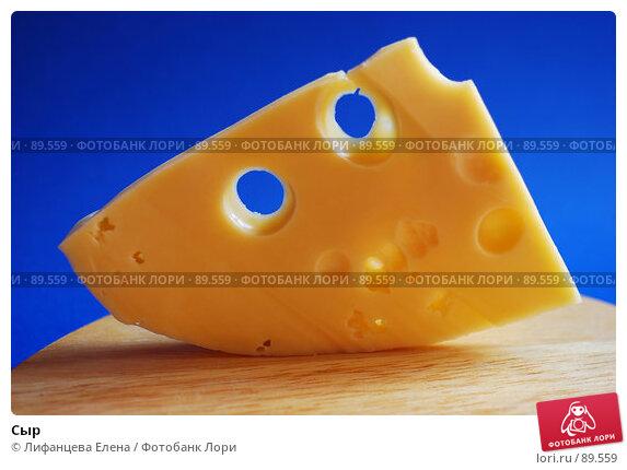 Сыр, фото № 89559, снято 25 сентября 2007 г. (c) Лифанцева Елена / Фотобанк Лори