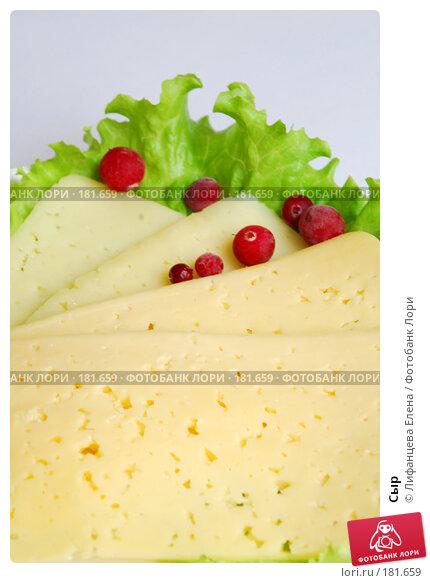 Сыр, фото № 181659, снято 19 января 2008 г. (c) Лифанцева Елена / Фотобанк Лори