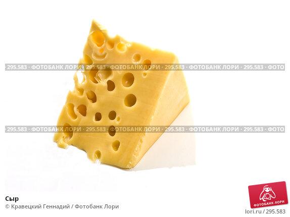 Сыр, фото № 295583, снято 20 сентября 2005 г. (c) Кравецкий Геннадий / Фотобанк Лори