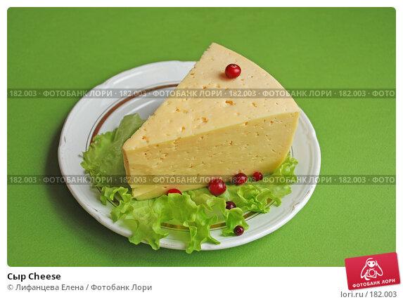 Сыр Cheese, фото № 182003, снято 19 января 2008 г. (c) Лифанцева Елена / Фотобанк Лори