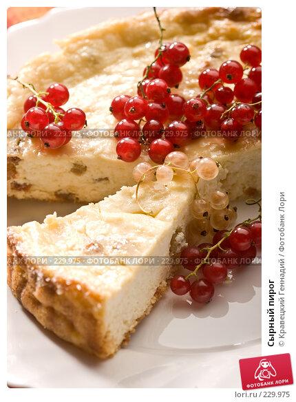 Сырный пирог, фото № 229975, снято 25 июля 2005 г. (c) Кравецкий Геннадий / Фотобанк Лори