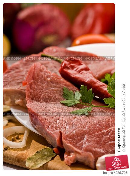 Сырое мясо, фото № 226795, снято 25 сентября 2005 г. (c) Кравецкий Геннадий / Фотобанк Лори