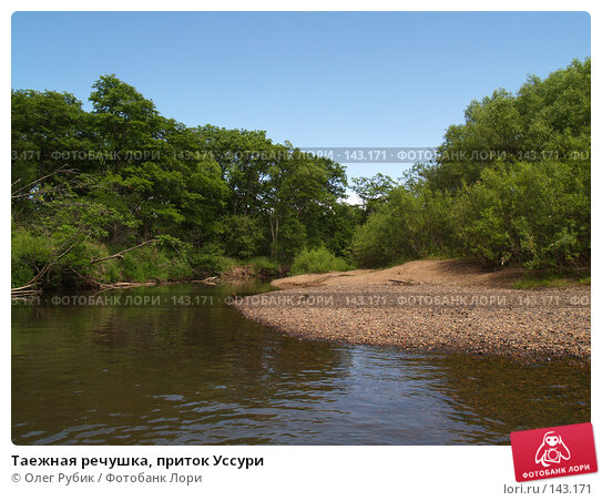 Таежная речушка, приток Уссури, фото № 143171, снято 8 июля 2007 г. (c) Олег Рубик / Фотобанк Лори