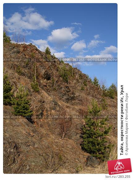 Тайга, окрестности реки Ис, Урал, фото № 283255, снято 10 мая 2008 г. (c) Архипова Мария / Фотобанк Лори