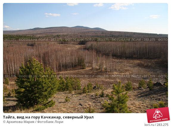 Тайга, вид на гору Качканар, северный Урал, фото № 283275, снято 10 мая 2008 г. (c) Архипова Мария / Фотобанк Лори