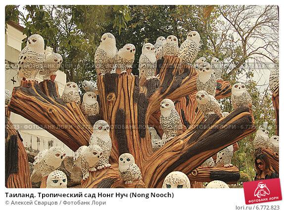 Купить «Таиланд. Тропический сад Нонг Нуч (Nong Nooch)», фото № 6772823, снято 22 февраля 2014 г. (c) Алексей Сварцов / Фотобанк Лори