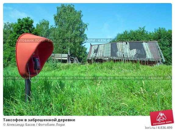 Купить «Таксофон в заброшенной деревне», фото № 4836499, снято 30 июня 2013 г. (c) Александр Басов / Фотобанк Лори