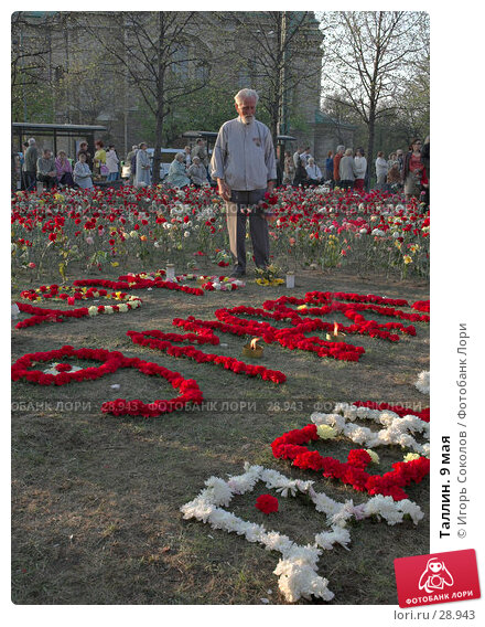 Таллин. 9 мая, эксклюзивное фото № 28943, снято 9 мая 2006 г. (c) Игорь Соколов / Фотобанк Лори