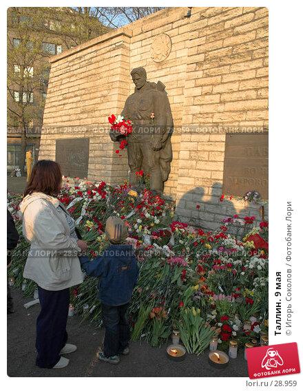 Таллин. 9 мая, эксклюзивное фото № 28959, снято 9 мая 2006 г. (c) Игорь Соколов / Фотобанк Лори