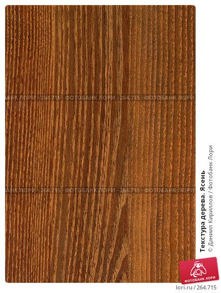 Текстура дерева. Ясень, фото № 264715, снято 24 июля 2017 г. (c) Даниил Кириллов / Фотобанк Лори