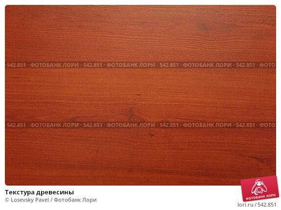 Текстура древесины, фото № 542851, снято 9 августа 2017 г. (c) Losevsky Pavel / Фотобанк Лори