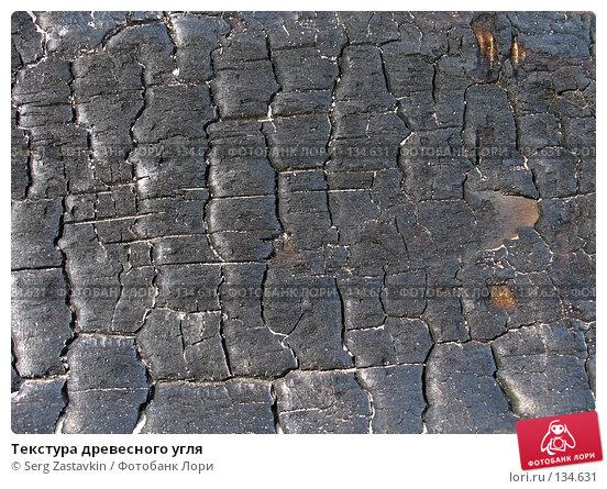Текстура древесного угля, фото № 134631, снято 2 октября 2005 г. (c) Serg Zastavkin / Фотобанк Лори