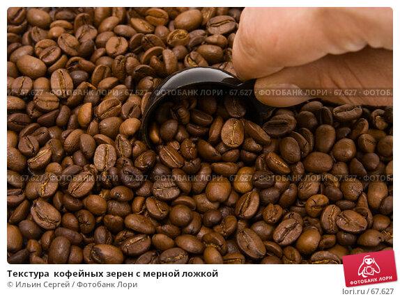 Текстура  кофейных зерен с мерной ложкой, фото № 67627, снято 16 апреля 2007 г. (c) Ильин Сергей / Фотобанк Лори