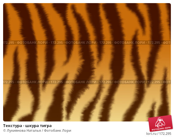 Текстура - шкура тигра, иллюстрация № 172295 (c) Лукиянова Наталья / Фотобанк Лори