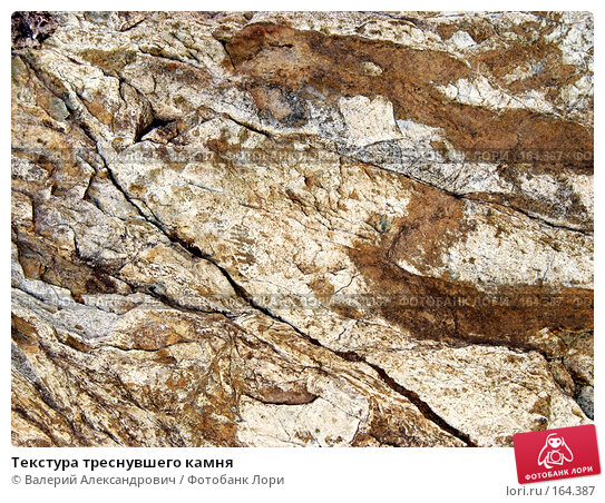 Текстура треснувшего камня, фото № 164387, снято 29 августа 2007 г. (c) Валерий Александрович / Фотобанк Лори