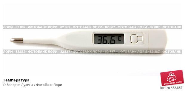 Температура, фото № 82887, снято 4 сентября 2007 г. (c) Валерия Потапова / Фотобанк Лори