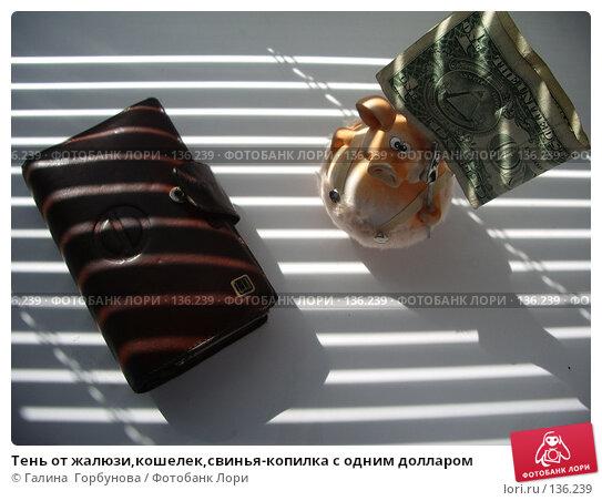 Тень от жалюзи,кошелек,свинья-копилка с одним долларом, фото № 136239, снято 7 июля 2006 г. (c) Галина  Горбунова / Фотобанк Лори