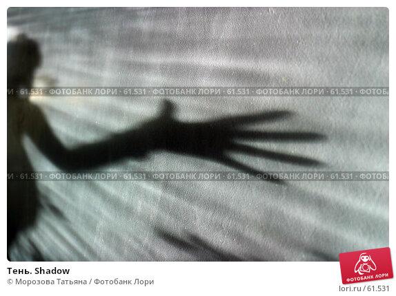Тень. Shadow, фото № 61531, снято 23 июня 2005 г. (c) Морозова Татьяна / Фотобанк Лори