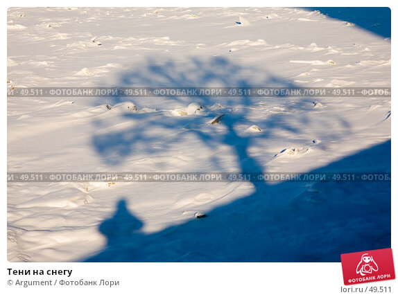 Купить «Тени на снегу», фото № 49511, снято 9 февраля 2007 г. (c) Argument / Фотобанк Лори
