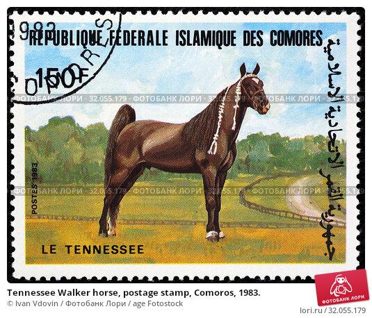 Tennessee Walker horse, postage stamp, Comoros, 1983. (2014 год). Редакционное фото, фотограф Ivan Vdovin / age Fotostock / Фотобанк Лори